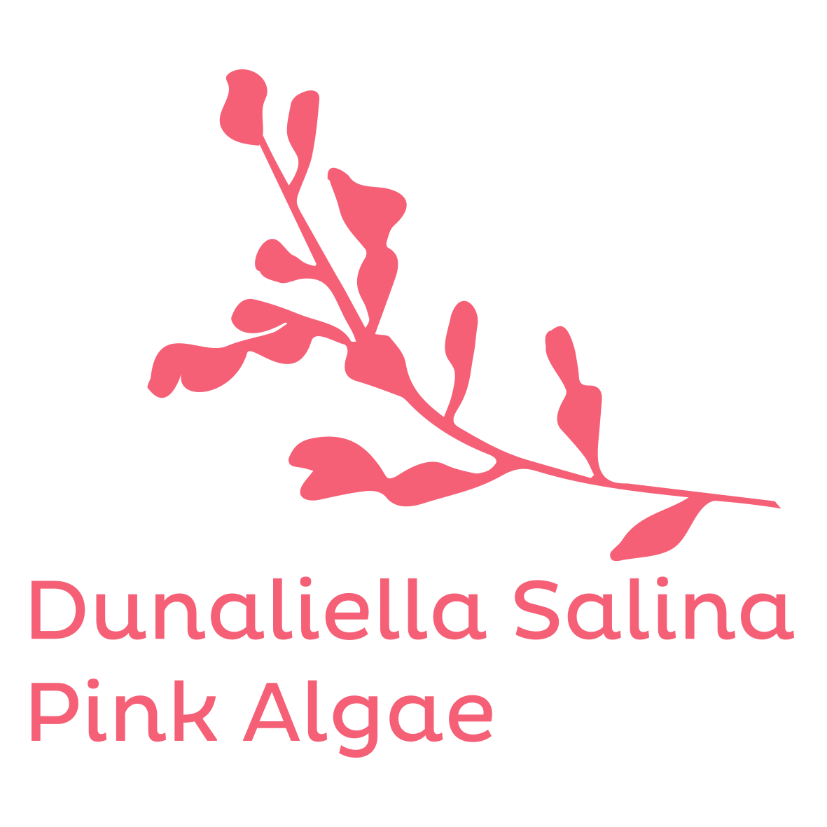pink alguae natural
